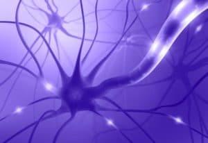 Image shows neuroplasticity