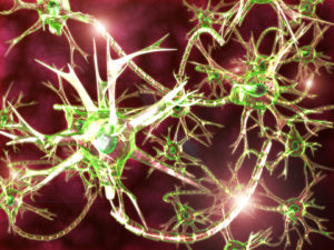 brain-synapse